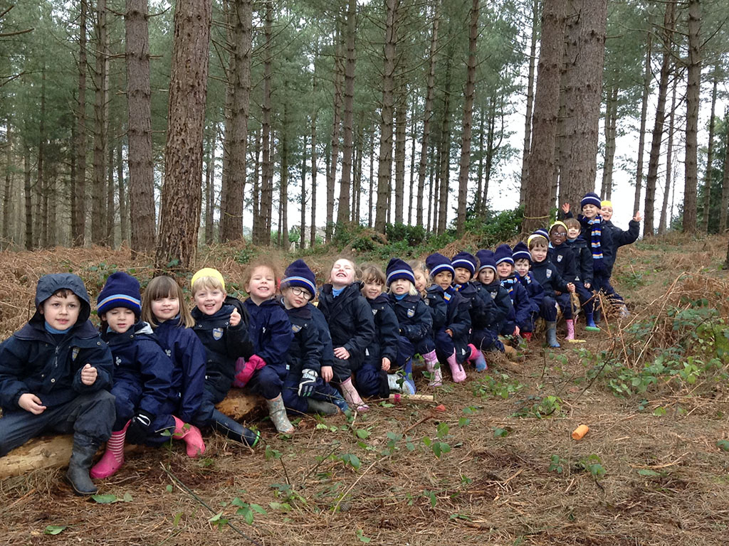 Fun in the Forest for Early Years