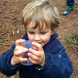 A chance to shine in a new environment! The EYFS team adventure to the near by woods to learn and play in the great outdoors…